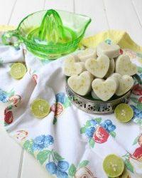 Gut Healing Key Lime Bites