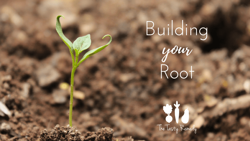 Building your Root   thetastyremedy.com